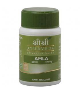 АМЛА /Анвала /Amla  60tabs Антиоксидант, укрепляет иммунитет.