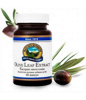 Экстракт листьев оливы / Olive leaf extract / Улучшаетсостояниеиммунной системы