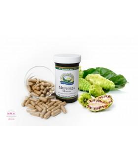Моринда / Mоrinda Защита от вирусных и бактериальных инфекций